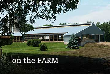 Agricultural Farm Post Frame Metal Barn Building Design Contruction NY